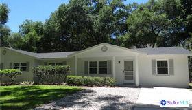 103 N Clayton Street, Mount Dora, FL 32757