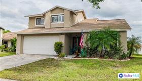 16121 Gardendale Drive, Tampa, FL 33624