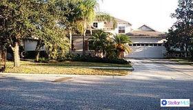 8115 Hampton Glen Drive, Tampa, FL 33647