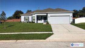 15119 Zenith Avenue, Mascotte, FL 34753