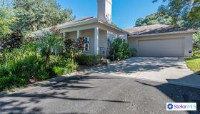 550 S Sandlake Court, Mount Dora, FL 32757