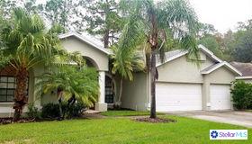 4389 Worthington Circle, Palm Harbor, FL 34685