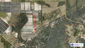 4770 Saffold Road, Wimauma, FL 33598