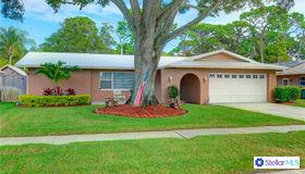 12897 Lois Avenue, Seminole, FL 33776