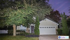 3377 Oak Brook Lane, Eustis, FL 32736
