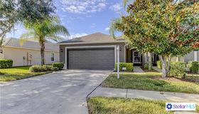 13711 Eastfork Lane, Hudson, FL 34669