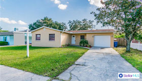 7317 Willow Park Drive, Tampa, FL 33637
