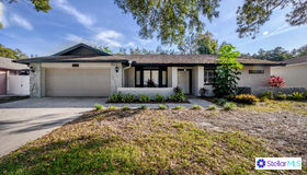 4806 Centerbrook Court, Tampa, FL 33624