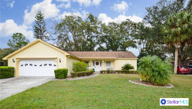 18509 Putters Place, Tampa, FL 33647