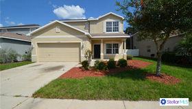 11168 Creek Haven Drive, Riverview, FL 33569