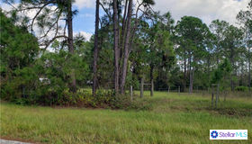 Sweet Hill Road, Polk City, FL 33868