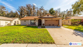 3540 Player Drive, New Port Richey, FL 34655