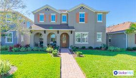 17233 Richness Way, Land O Lakes, FL 34638