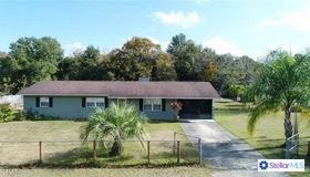 10111 Se 134th Lane Lane, Belleview, FL 34420