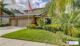 1310 Misty Valley Drive, Brandon, FL 33510