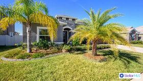 13825 Artesa Bell Drive, Riverview, FL 33579