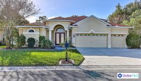 6140 Japonica Court, New Port Richey, FL 34655