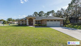 13338 Chippendale Street, Spring Hill, FL 34609