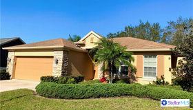 10637 Gooseberry Court, Trinity, FL 34655