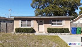 4121 W Grace Street, Tampa, FL 33607