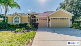 1310 Oxbridge Drive, Lutz, FL 33549