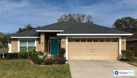 18417 Dajana Avenue, Land O Lakes, FL 34638
