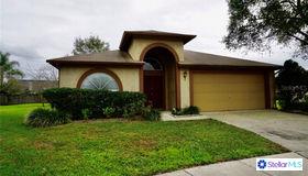 2027 Avalon Cove Court, Brandon, FL 33511