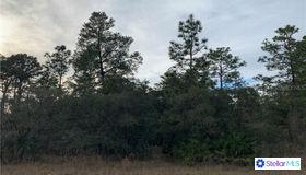 7433 Mandrake Road, Weeki Wachee, FL 34613