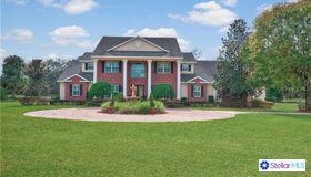 11530 Hammock Oaks Court, Lithia, FL 33547