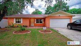 4209 Lakewood Drive, Seffner, FL 33584