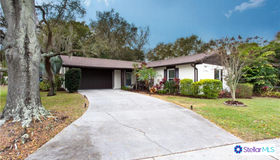 8512 Woodbridge Boulevard, Tampa, FL 33615