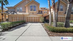 14427 Mirabelle Vista Circle, Tampa, FL 33626
