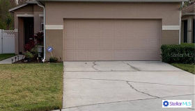 26934 Stillbrook Drive, Wesley Chapel, FL 33544