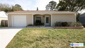 5706 Ridgestone Drive, Tampa, FL 33625