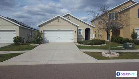 10610 Whispering Hammock Drive, Riverview, FL 33578