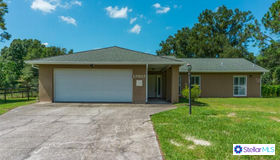 17017 Wintergreen Court, Lutz, FL 33558