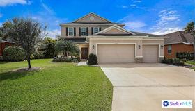 12909 21st Street E, Parrish, FL 34219