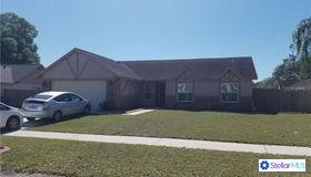 1006 Cameo Crest Lane, Valrico, FL 33596