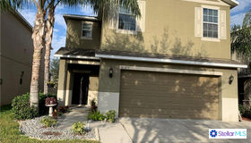 10523 White Peacock Place, Riverview, FL 33578