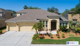 7321 Wild Oak Lane, Land O Lakes, FL 34637
