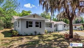 406 N Palm Avenue, Howey IN The Hills, FL 34737