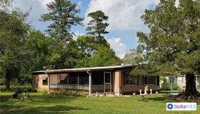 1955 Pinewood Lane, Mount Dora, FL 32757