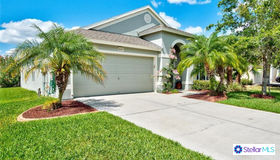 30337 Princess Bay Drive, Wesley Chapel, FL 33545