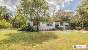 317 Hillside Drive, Lakeland, FL 33803