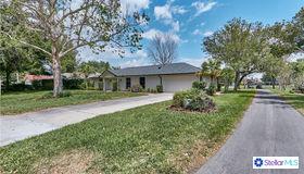 6805 Bittersweet Lane, Orlando, FL 32819
