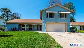 12703 Pinebrook Lane, Hudson, FL 34667