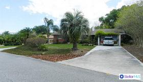 115 E Cypress Avenue, Howey IN The Hills, FL 34737