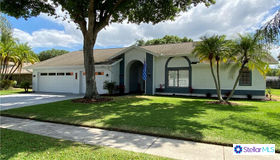 4018 Belmoor Drive, Palm Harbor, FL 34685