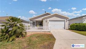 1291 Jonesville Terrace, The Villages, FL 32162