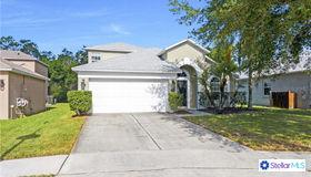 3224 Kingstown Court, Orlando, FL 32825